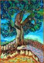041-lonesome-rising-tree.JPG