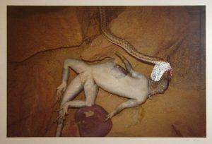 Frank Roedel. Libyan desert I. 2004