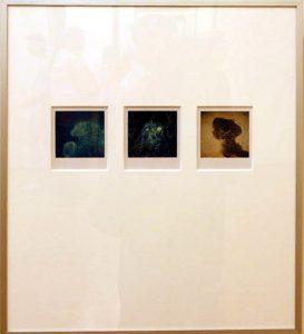 Arno Fisher. Из серии - Сад. 1977-2007 (Полароид) 1