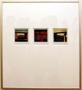 Arno Fisher. Из серии - Сад. 1977-2007 (Полароид)
